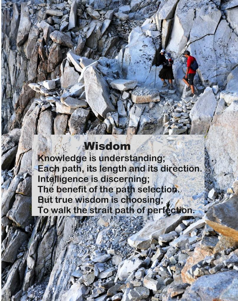 Wisdom6